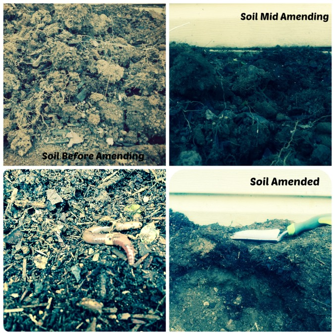 Collage depicting soil being amended